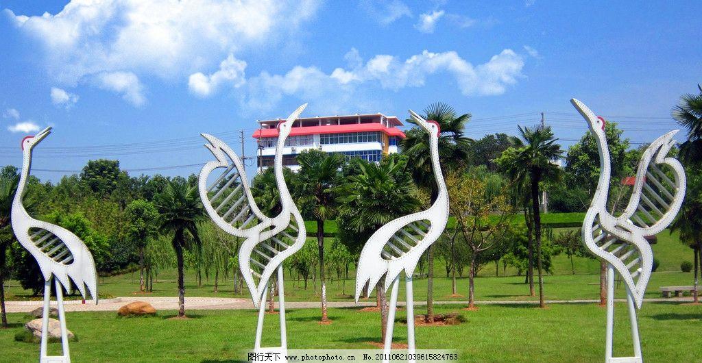 滨江白鹭雕塑 滨江 白鹭 雕塑 蓝天 白云 草地 摄影 建筑 园林 树木