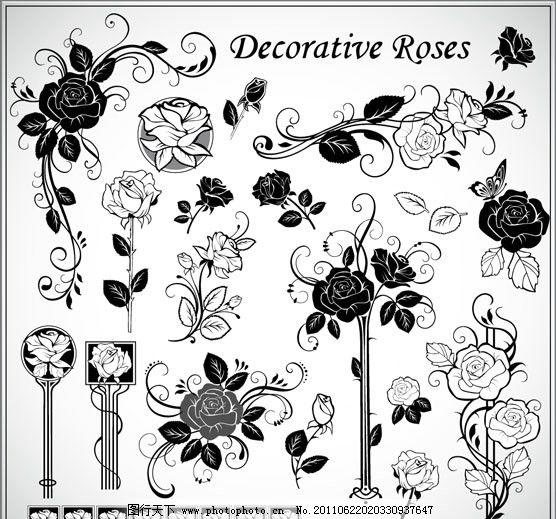 古典花纹花边 古典 玫瑰花