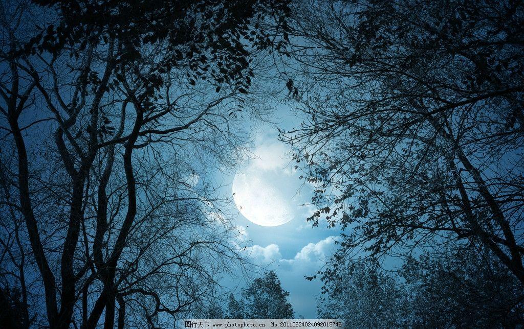 夜晚高清图片 哥特风格 古堡图片 夜晚图片 月亮图片 夜晚月亮 树木