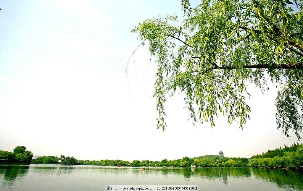 公园一角 翠柳 柳树 湖面 水面 湖水 公园 蓝天 白云 山水风景 自然