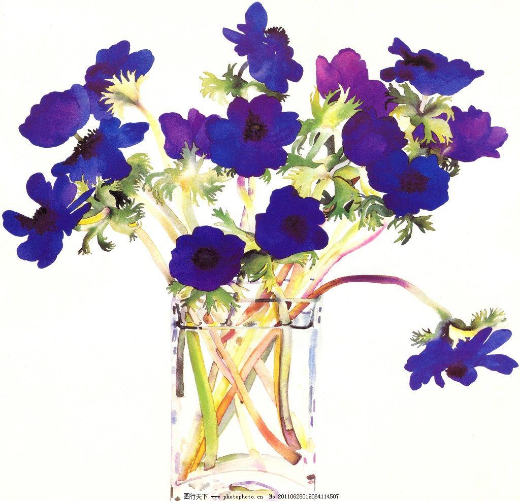 瓶中水彩花卉图片